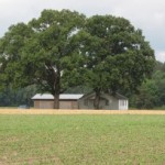 Rural Electric Cooperatives Improve Energy Efficiency with On-Bill Financing