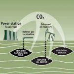 Opportunities for Carbon Capture in California
