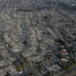 What Does the Stock Market Tell Us about the California Wildfires?