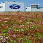 Have You Visited Ford's Gigantic Living Roof Lately?
