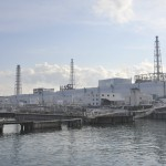 Nuclear Energy Restart: New Tsunami Safety Measures in Japan